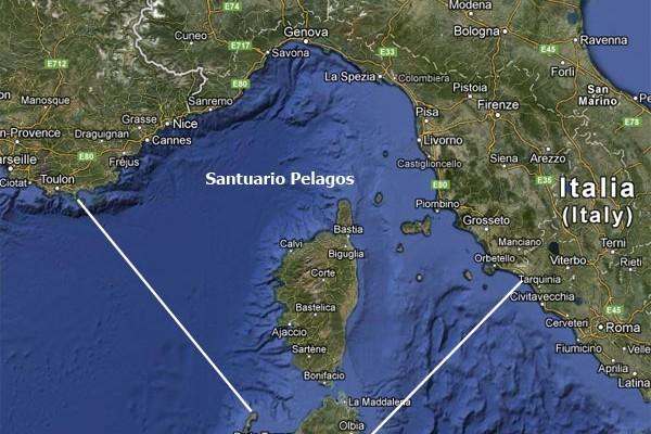 Plastic Busters Mpas: rilievi nel Santuario dei cetacei la mappa del sito